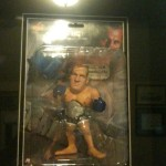 Ultimate Fedor Collection7