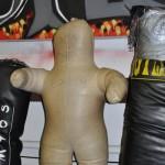 Stage Royce Gracie WFA Rosenau 2012 (49)