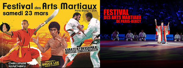 Festival-des-arts-martiaux