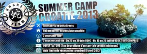 Snake Team Summer Camp 2013 banniere