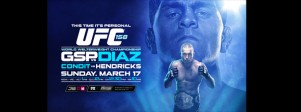 UFC 158 bannière 2