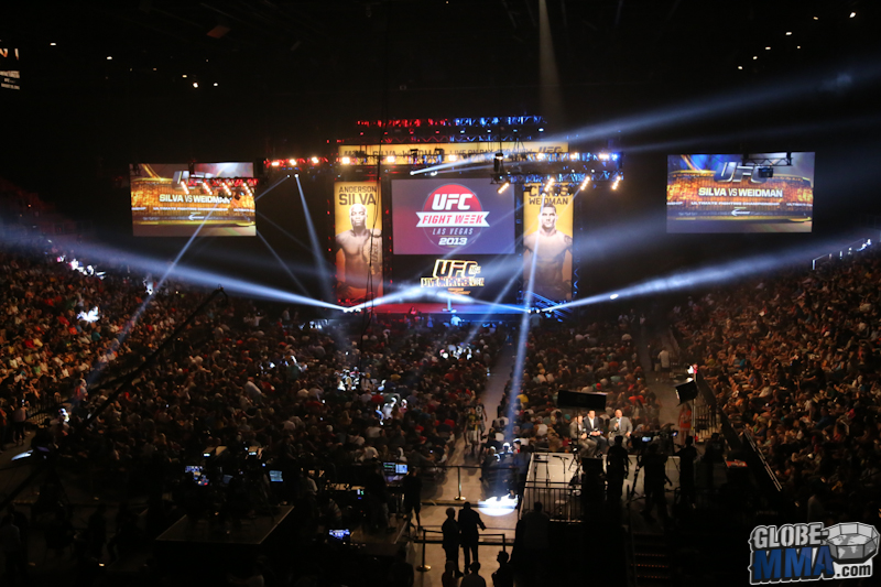 UFC Fan Expo 2013  (46)