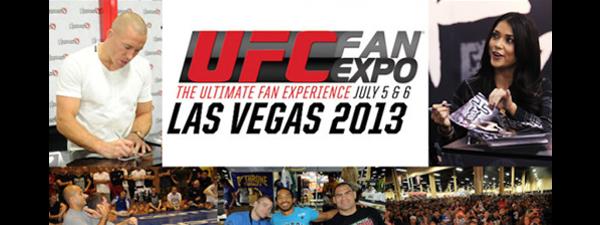 UFC-Fan-Expo-2013-bannière