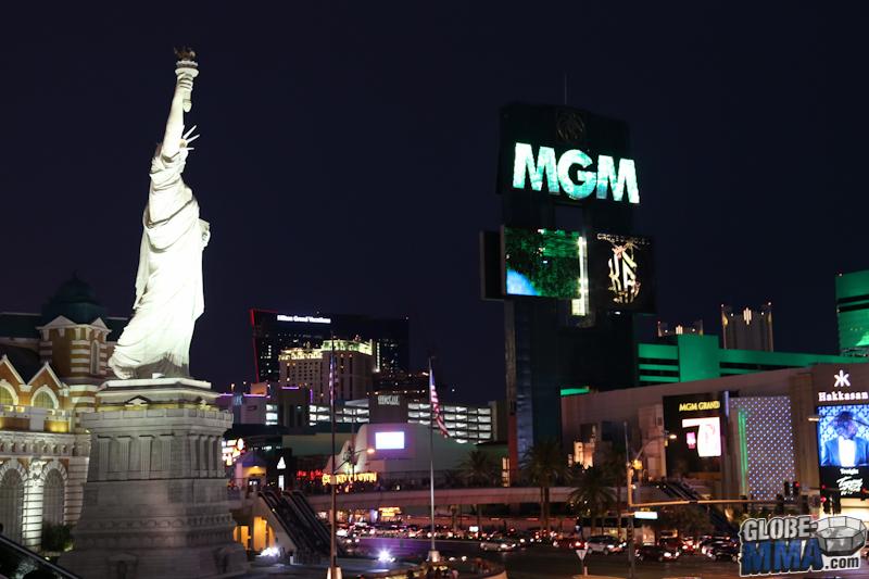 TST Las Vegas MMA Experience 2013 (13)