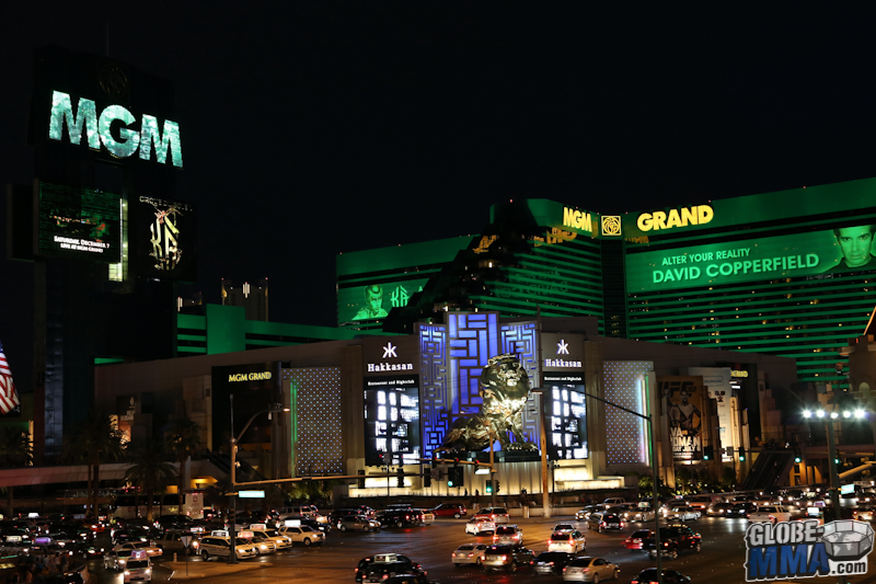 TST Las Vegas MMA Experience 2013 (14)