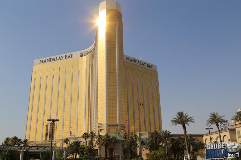 TST Las Vegas MMA Experience 2013 (26)