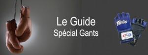 Guide-des-gants-de-boxe-et-de-MMA-by-Globe-MMA