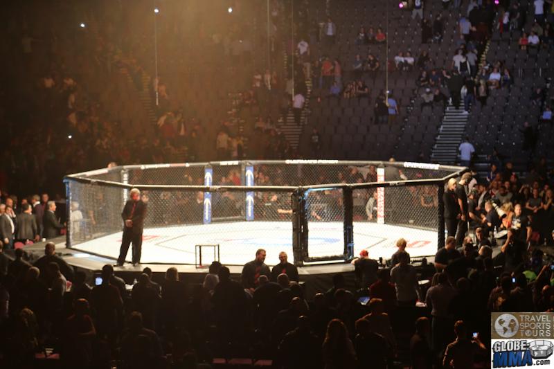 TST Manchester UFC 2013 (31)