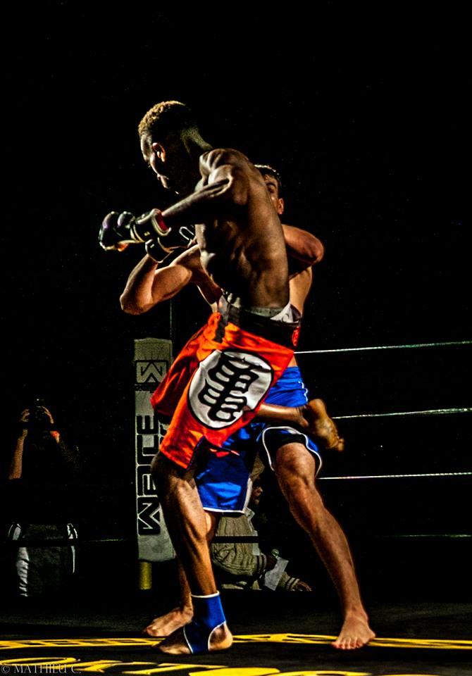 Saiyan MMA fightshort