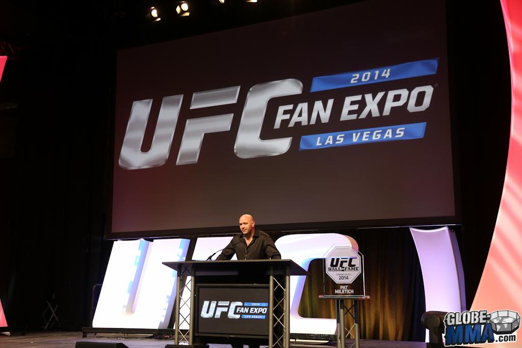 UFC Fan Expo 2014 (111)