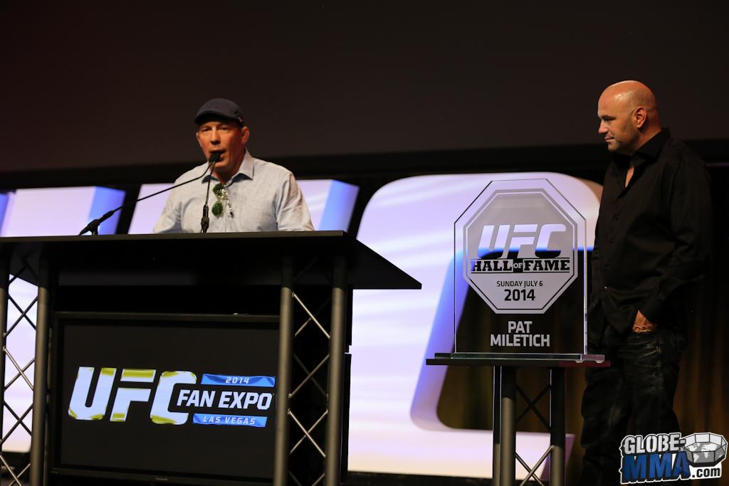 UFC Fan Expo 2014 (115)