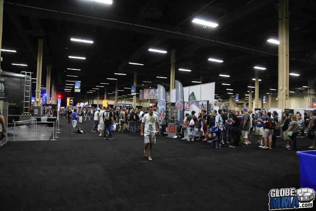 UFC Fan Expo 2014 (133)
