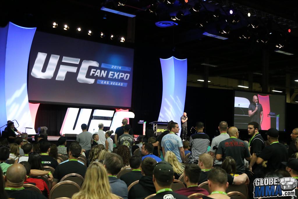 UFC Fan Expo 2014 (43)