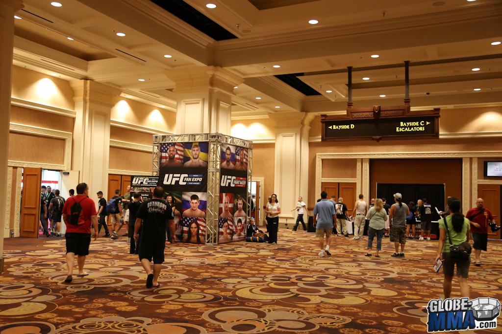 UFC Fan Expo 2014 (5)