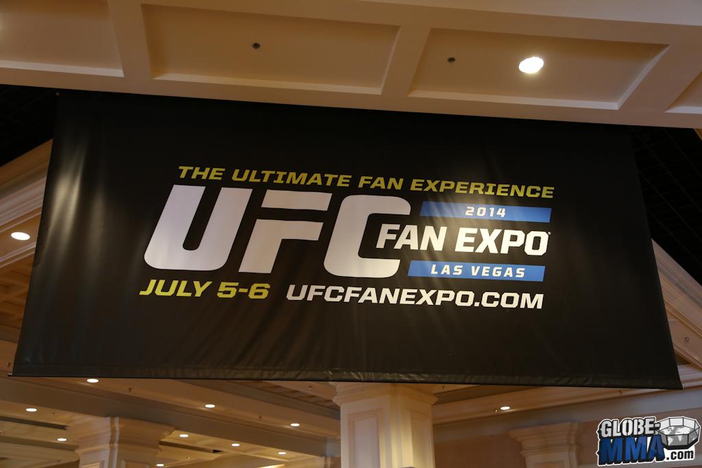 UFC Fan Expo 2014 (6)