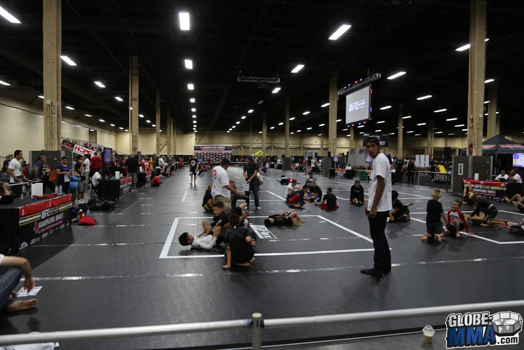 UFC Fan Expo 2014 (7)