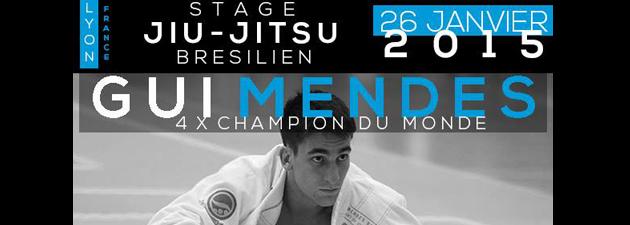 Stage-Gui-Mendes-Lyon20153